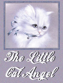 The Little Cat Angel